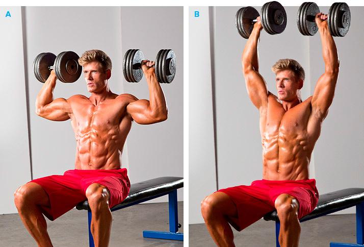 Упражнения для накачки плеч