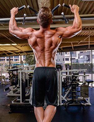 Мышцы спины при подтягиваниях
