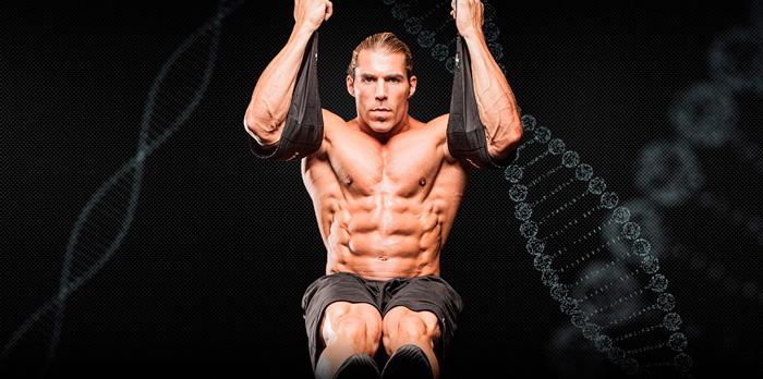 Мышцы живота (прямые и косые) анатомия и строение брюшного пресса