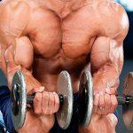 Тренировка с гантелями на верх тела