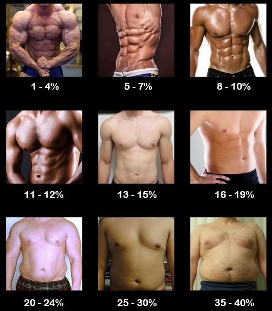 Количество жира у мужчин