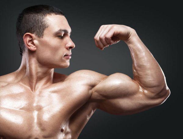 Рост мышц и калорийность