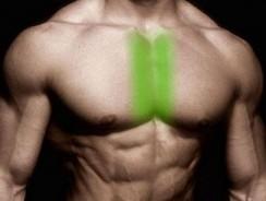 Как проработать внутреннюю область грудных мышц