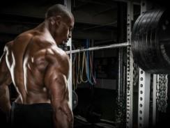 Тренировка спины для начинающих: 4 упражнения для построения широкой, сильной и массивной спины