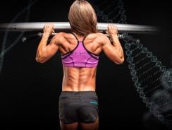 Анатомия мышц спины. Научный подход к тренировке спины