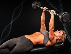 Грудные мышцы — Научный подход к тренировке груди