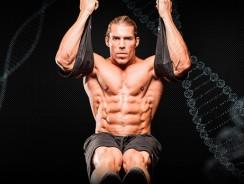 Мышцы пресса — Бодибилдинг с научным подходом к тренировке мышц живота